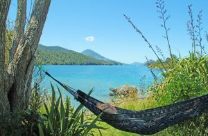 marlborough-sounds4